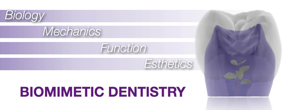 Biomimetric Dentistry
